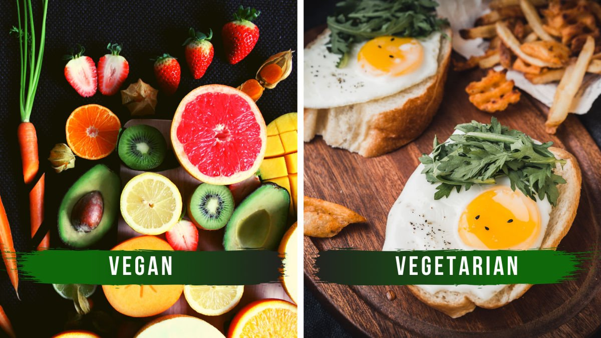 VEGANISM AND HOW TO BECOME ONE? - Little Umbrella Foundation